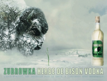 medium_vives_zubrowka.jpg