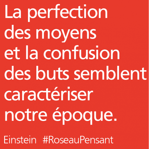 citations,roseau pensant,einstein