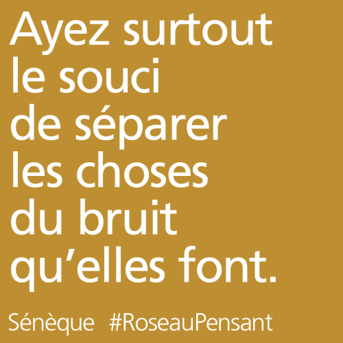 citation,citations,roseau pensant,sénèque