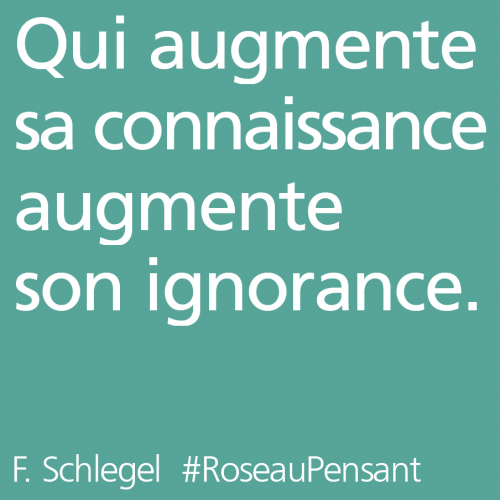 citation,schlegel,roseau pensant