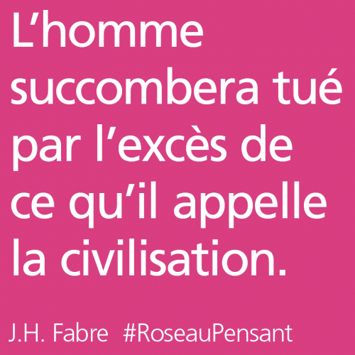 citation,citations,roseau pensant,fabre