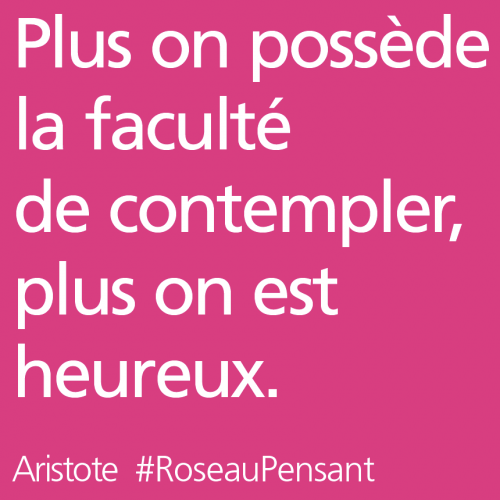 citation,citations,roseau pensant,aristote