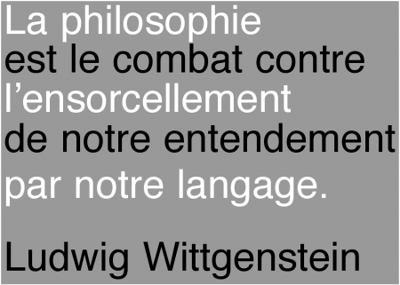 citations wittgenstein