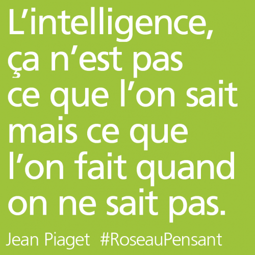 citation,citations,roseau pensant,piaget