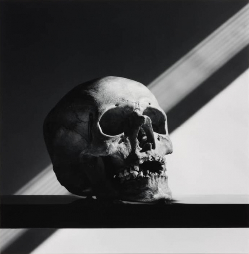 skulls,têtes de morts,art,crâne,mapplethorpe