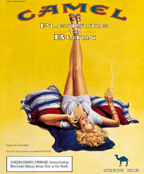 pin-up,pub,camel